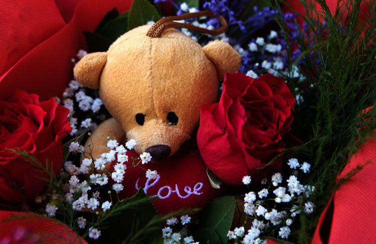 Εχεις δει ποτέ σου αρκούδα πίσω από τριαντάφυλλο; Οχι; Είδες πόσο καλά κρύβεται;