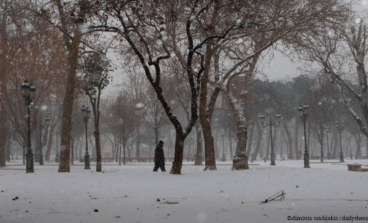 Λευκή ομορφιά σε μια γκρίζα πόλη