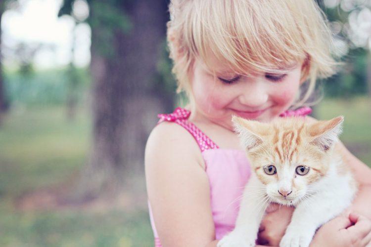 b01df2a3a9e0 Οι γάτες απομακρύνουν τον κίνδυνο άσθματος στα παιδιά - dailythess ...